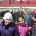 Страусова ферма 3
