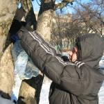 05 Допоможи зимуючим птахам