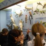 01 Під час екскурсії до Музею природи