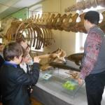 03 Під час екскурсії до Музею природи