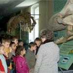 03 У музеї природи