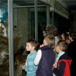 09 У музеї природи