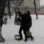 01 Допоможемо зимуючим птахам