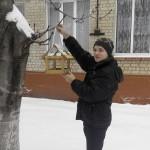 02 Допоможемо зимуючим птахам
