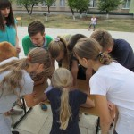 11 Спортивні діти – спортивна країна